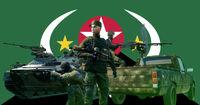 MIL Rifleman Flag.jpg