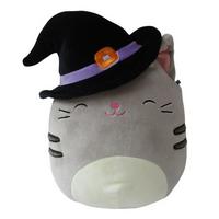 A photo of a cat in a hat.