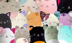Cat Squad.jpg
