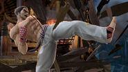 Mishima Dojo Official Pic 1
