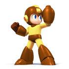 Mega Man Palette 04