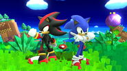 SSB4 WiiU Sonic and Shadow in Windy Hill