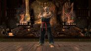 Mishima Dojo Official Pic 5