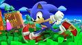 Sonic wii u