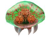 Metroid (creature)