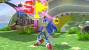 Sonic with a special flag
