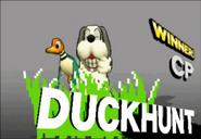 Duck Hunt 16