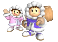 Ice Climbers - Super Smash Bros. Melee.png
