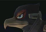 Event 32: Bird in Darkest Night
