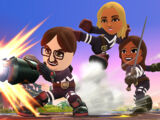 Fighting Mii Team