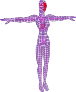 Pose T Fighting Wire Frame Female (SSBM)