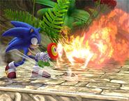 Sonic usando la Flor de fuego SSBB