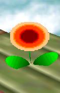 Flor de fuego SSB