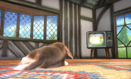 Nintendog en la Casa SSB4 (3DS)