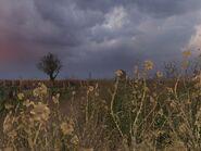 Ss raindrop 06-01-12 13-51-51