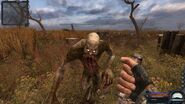 Swamp bloodsucker