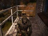 Stalker-dezerter