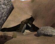 XrEngine 2013-07-11 19-28-46-80
