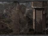 Старе селище