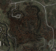 Red forest early global map