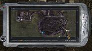 Артефакты «Пружина» и «Пустышка» на Радаре — карта