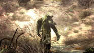 Unknown stalker carries Strelok