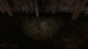 Тайник в пне Рыжий лес ЧН.png