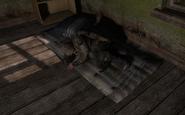 Спящий НИП