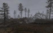 Лагерь в тумане Misery