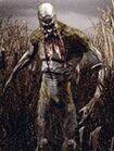 Marsh creature