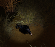 XrEngine 2012-05-23 16-34-37-12