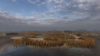 Marsh12