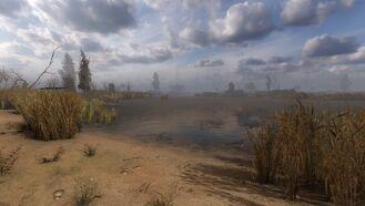 Marsh14