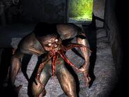 Кровосос подземелья