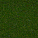 Texture-2001 Gras.png