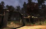 (red forest) stalker cs 003 1680w.jpg