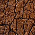 Texture-2001 Ground15.png