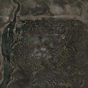 Marsh 111.jpg
