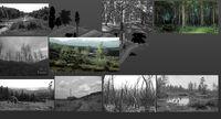 Concept-art S2 old forest variants.jpg