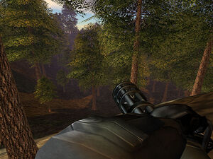 Oblivion lost 17.jpg