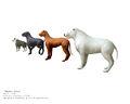 Blind dogs.jpg