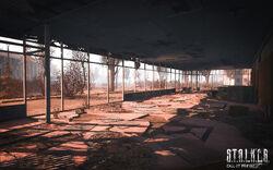 Denis Rutkovsky Pripyat(1).jpg