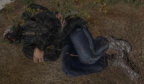 Wounded bandit novice.jpg