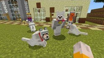 Minecraft_Xbox_-_Pick_A_Pet_-111-