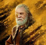 Odin Ragnarok Character Poster