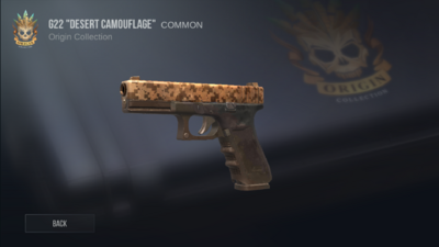 G22 Desert Camouflage.PNG