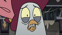 S3E36 Rich Pigeon looking very worried