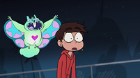 S1E4 Magic flying squirrel swoops down on Marco