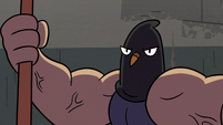 S3E20 Executioner pigeon appears