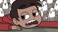 S3E20 Marco Diaz 'think that's still a possibility'